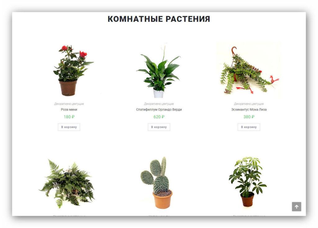 kupit-sajt-internet-magazin-dostavka-cvetov-po-rossii